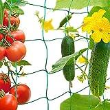 Anyingkai Red de Enrejado Jardín,Trellis Red de Jardín,Red para Plantas Trepadoras,Malla Plantas Trepadora,Enrejado para Plantas Trepadoras,Red de Jardín Verde,Malla para Plantas