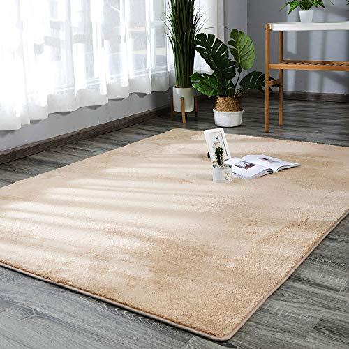HYXXQQ Kort fluwelen vloerbedekking/rechthoekig tapijt loper, wasbaar, geschikt voor slaapkamertapijten | leren | balkon | woonkamer | keuken | woondecoratie