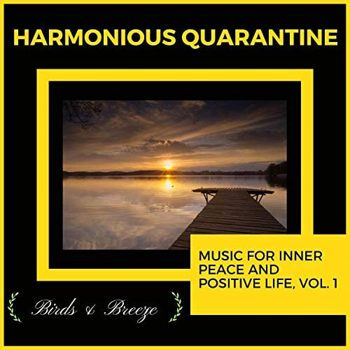 Mystical Guide, Sanct Devotional Club, The Focal Pointt, Liquid Ambiance, Ambient 11, Yogsutra Relaxation Co, The Inner Chord, Dr. Yoga, Dr. Bendict Nervo, Universal Silence, Serenity Calls, Ultra Healing, Dr. Krazy Windsor, Forest Therapy & Zen Town