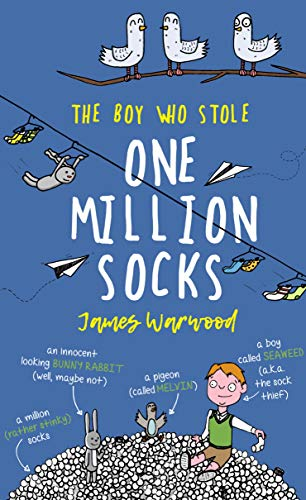 The Boy Who Stole One Million Socks (English Edition)