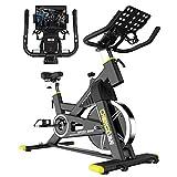 Indoor Cycling Bike Stationary Exercise Bike, Comfortable Seat Cushion, 35lbs Flywheel, Ipad Holder...