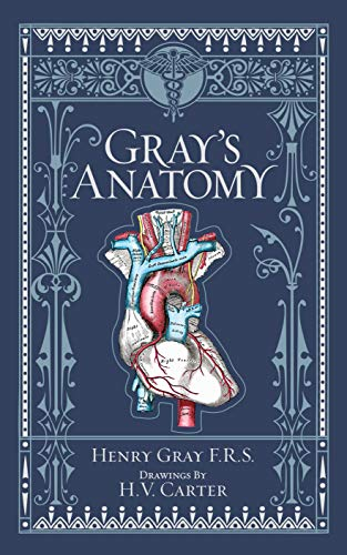 Compare Textbook Prices for Gray's Anatomy Barnes & Noble Collectible Classics: Omnibus Edition  ISBN 9781435167919 by Henry Gray