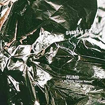 Numb (Teddy Geiger Remix)