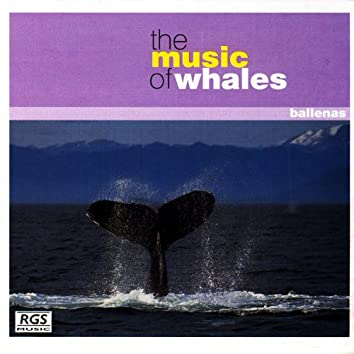 The Music Of Whales