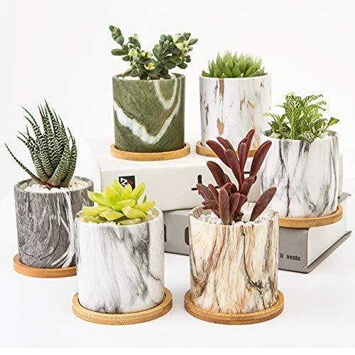 Succulent Plant Pots, 3.5 inch Marbling Ceramic Planters with Drainage Hole, Small Flower Pot Indoor...