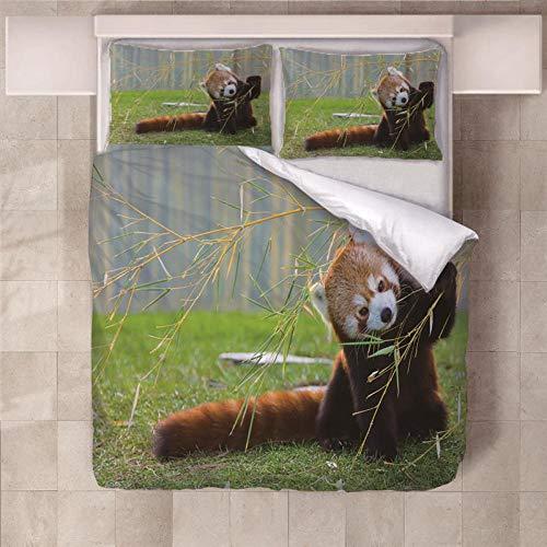 JKZHILOVE Bettwäsche roter Panda 200x200cmAnthrazit Microfaser IKEA bettwäsche Set Uni Doppelbett Bettbezug mit Reißverschluss und 2 Kissenbezüge 80 x 80 cm