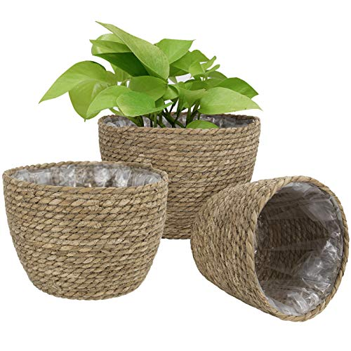 Cesta de Plantas de Hierba Marina en el Interior y en el Exterior, Cubierta de macetas, contenedores de Plantas, Natural (3-Pack)