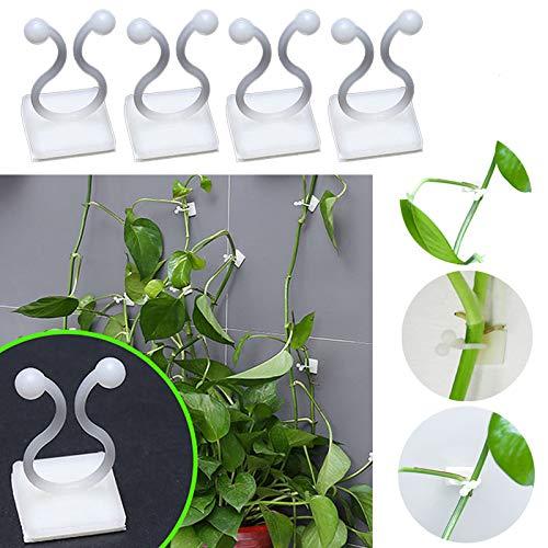 Nobranded 100 Stück Pflanzen-Garten-Clips, selbstklebende Wandbefestigungs-Clips für Kletterpflanzen, Reben, Gemüse, Stütz-Halter, mittlere Höhe, 35 mm