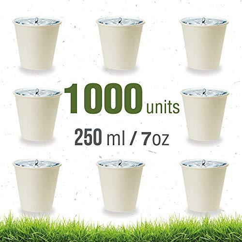 Soul Forest - herbruikbare kartonnen bekers à 250 ml - verpakking voor biologisch afbreekbare wegwerpbekers voor water, sappen, frisdranken en koffie