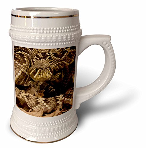 3dRose Eastern Diamondback Rasselschlange, USA-US39 JMC0016-Joe und Mary Ann McDonald Tasse, 510 ml (stn_94187_1), 625 ml Stein, weiß