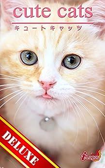 [アキバ書房]のcute cats DELUXE04 マンチカン
