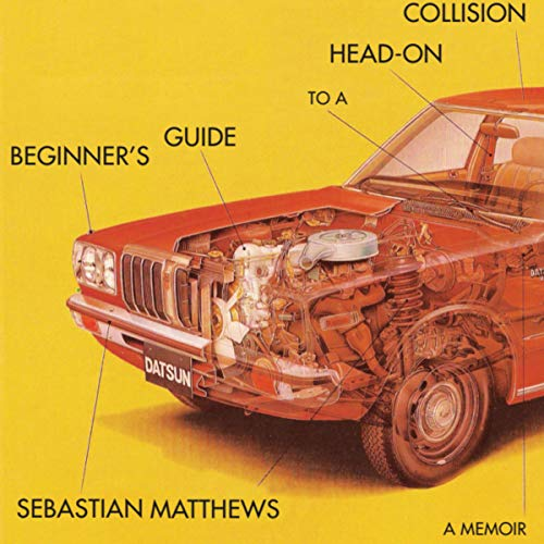 Beginner's Guide to a Head-On Collision audiobook cover art
