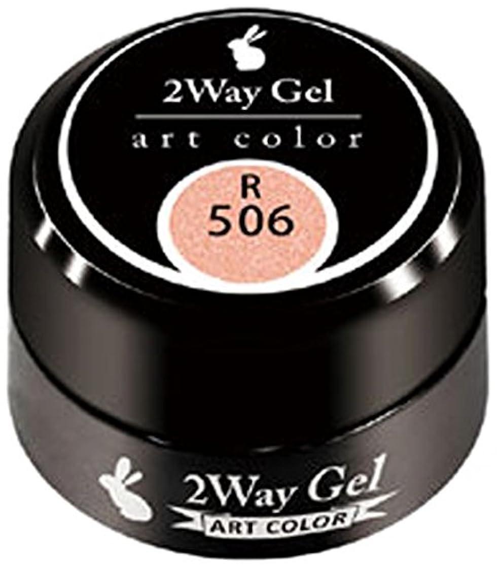 ファブリック暗い不十分なプリジェル ジェルネイル ツーウェイジェル アートカラーa R506 3g TWOWAY-R506