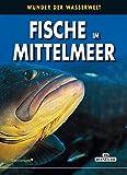 Fische im Mittelmeer: Wunder der Wasserwelt (PiBoox Maris) - Andrea Ghisotti