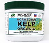 DOGZYMES Organic Norwegian Kelp for Pets, 12-Ounce
