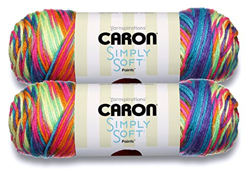 Caron Simply Soft Bulk Buy Paints 100% Acrylic Yarn (2-Pack) ~ 5 oz. Skeins (Rainbow Bright)
