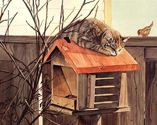 Leuke kat slapende vogel nest en vogel 5D DIY diamant tekenen volledige diamant ronde boor kruis steek keuken decoratie plakken borduurwerk 30cmx40cm 30cmx40cm