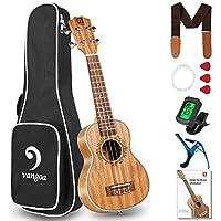 Mahogany 21 Inch Acoustic Ukelele with Beginner Kit