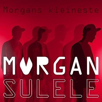 Morgans kleineste