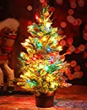 CASA CLAUSI Christmas Tree Tabletop 24 Inches 50 pre-lit multicolored lights with ornaments Artificial Green Tree