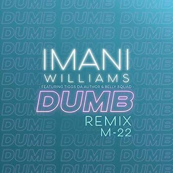 Dumb (M-22 Remix)