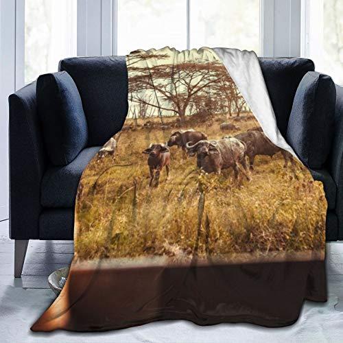 Manta de forro polar de 127 x 152 cm, para conducir Safari Cars On The Savannah In Masai Mara, Africa Home franela suave cálida manta de felpa para cama/sofá/oficina/camping