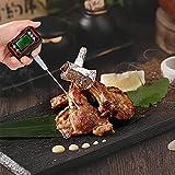 Nourriture numérique UN BARBECUE Thermomètre de cuisson Instant Lire la jauge de température Pyromètre avec une sonde réglable LCD Affichage rétro-éclairé