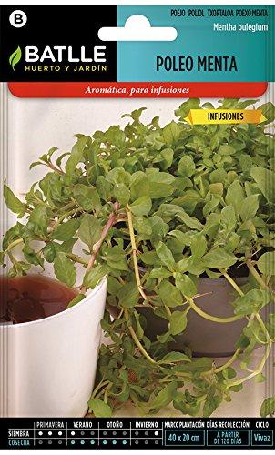Semillas aromáticas de Batlle - Poleo Menta (0,200g)