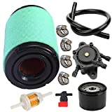 TOPEMAI 796031 Air Filter for Briggs & Stratton 591334 594201 590825 797704 John Deere MIU14395 GY21435 with Tune Up Kit