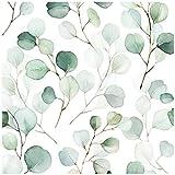 HaokHome 93044 - Papel pintado para pared, diseño de hojas de eucalipto, color verde y blanco, 45 x 3 m