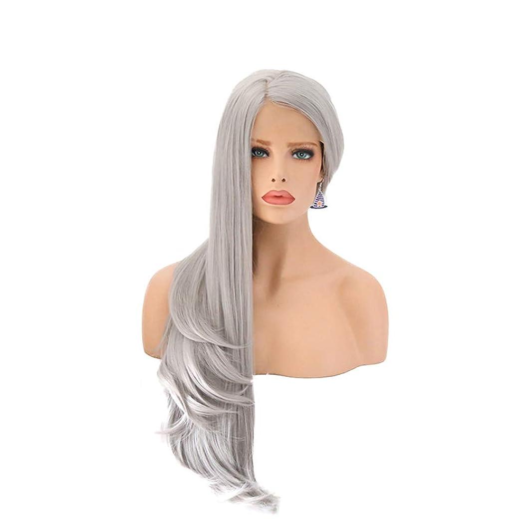 電化する酸度哺乳類ファッション女性用ウィッグ、フロントレースナチュラルグレーロングカーリーウィッグ、調節可能なかつら16-26インチウィッグ