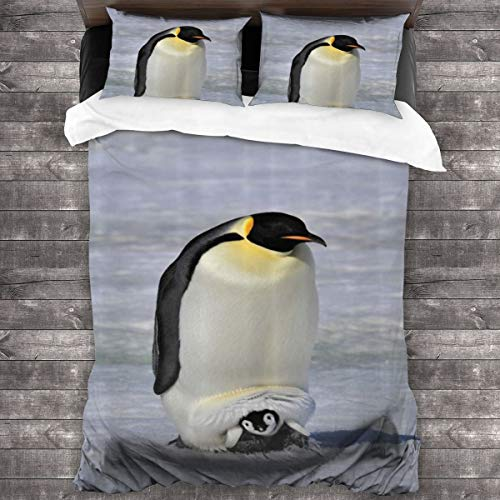 LiBei Juego de Ropa de Cama-Pingüino Emperador con Bebé Nieve Antártida Polo Norte Fauna Silvestre Naturaleza Fauna,Juego de Funda Nórdica y 2 Funda de Almohada(Single 135x210cm)
