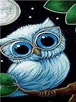 Diyのデジタル油絵子供大人初心者油絵数字キットによる絵画塗り絵大人手塗り - 白いフクロウ 40x50cm(フレームなし)