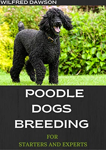 POODLE DOGS BREEDING FOR STARTERS AND...