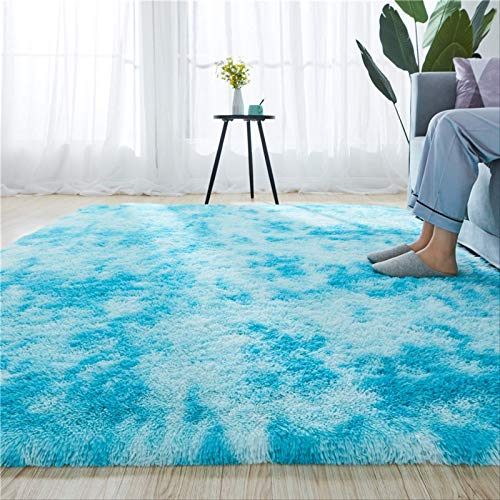 skinyo Velvet Carpet Bedroom Room Cute Bedside Salon Canapé Table Basse Tapis Épais Mat 120x160cm. 120 x 160 cm. Teindre Bleu et Blanc.