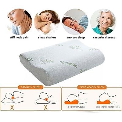 Ecosafeter Contour Memory Foam Pillow