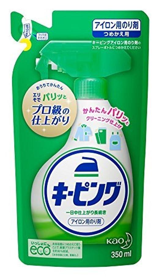 打ち負かす哺乳類去るキーピング 衣料用のり剤 アイロン用 つめかえ用 Japan