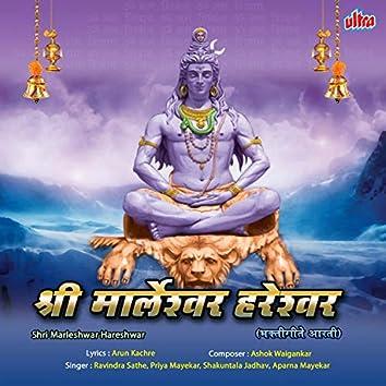 Shri Marleshwar Hareshwar