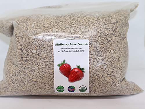 Sunflower Seeds, 5 Pounds Raw, Hulled, Unsalted, No Salt, USDA Certified Organic, Non-GMO Bulk, Product of USA