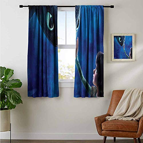 ZhiHdecor Bedroom Curtains Hiccup Toothless How to Train Your Dragon N8 Window Curtain for Living Room