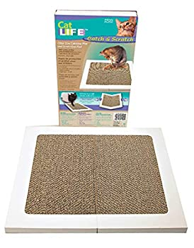 Penn-Plax Catch&Scratch Griffoir pour Chat