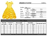 Zoom IMG-1 amzbarley bambina principessa belle vestito