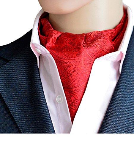 Wookki 100% Handmade Cravate Ascot Tie De Fantaisie En Polyester Soie Pour Mariée Cérémonie Fête Party Soirée Business Travail Homme Jeune Garçons Imp