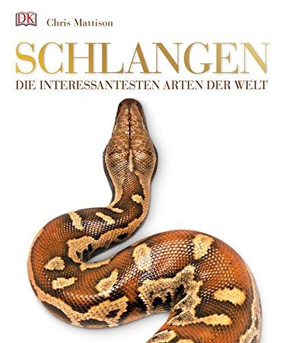 Schlangen: Die interessantesten Arten der Welt
