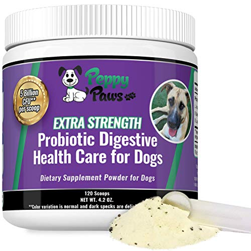 Probiotics for Dogs - Improves Dog Diarrhea - Constipation - Gas - Bad Breath - Dog Allergies - All Natural Dog Probiotic Powder - 5 Billion CFUs - Probiotics for Puppies to Seniors - 120 Scoops