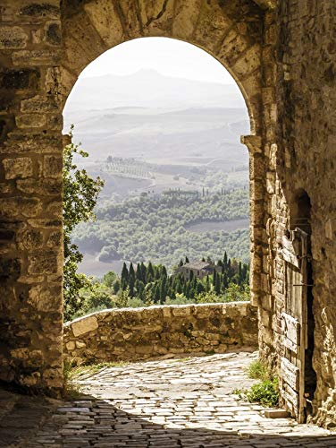 Tuscany, Italy - Old Arch with Landscape in Background - Photography A-92492 (9x12 Art Print, Wall Decor Travel Poster)