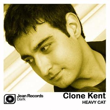 Heavy Cat