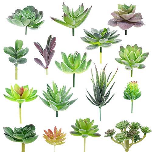 XONOR Künstliche saftige Beflockung pflanzte Verschiedene gefälschte Succulentsstämme, die für Lotoslandschaftshausgartendekoration floral sind (16 Stücke)