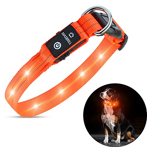 MASBRILL Rechargeable LED Dog Collar - Waterproof Collars Light Up Safety Dog Collars at Night with Flashing Light Collar, Durable Pet Collars for Medium Dogs