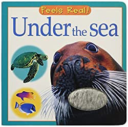 Under the Sea Book  for children